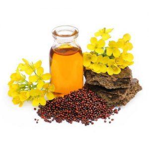 Musturd Oils