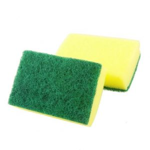 Sponge Scrub